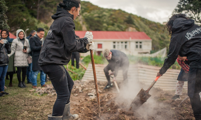 Monique Fiso and others shovelling dirt onto a hangi pit