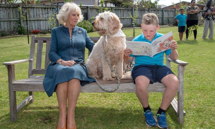 Amazing photo of a boy reading on a bench, with a big dog beside him and on the other side of the dog, Camilla, Duchess of Cornwall.
