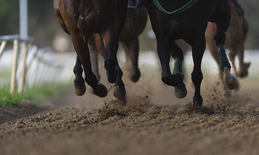 legs and hooves of horses racing