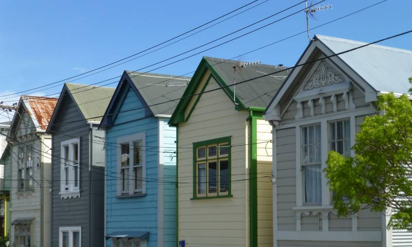 Six Wellington flats that don't breach the healthy homes regulations