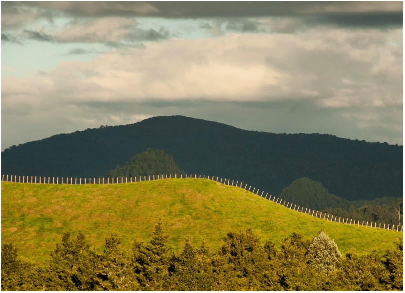 Landscape photograph of a fenceline following the top of a hill.