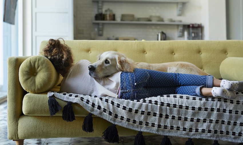 A young woman lies on a couch with her back to the camera, while a cute Golden retriever dog lies over her.