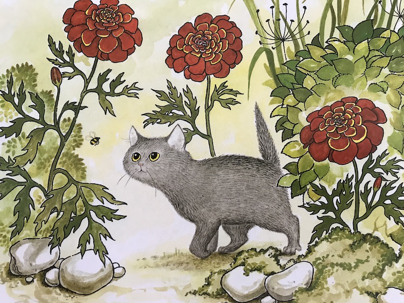 Illustration: small grey cat following a bee in garden