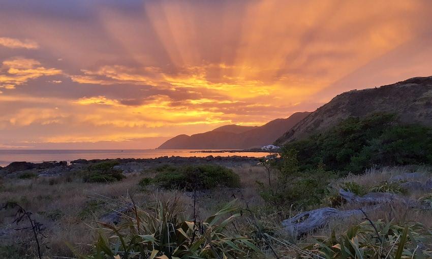 Stunning orange sunset over harakeke, water and hills