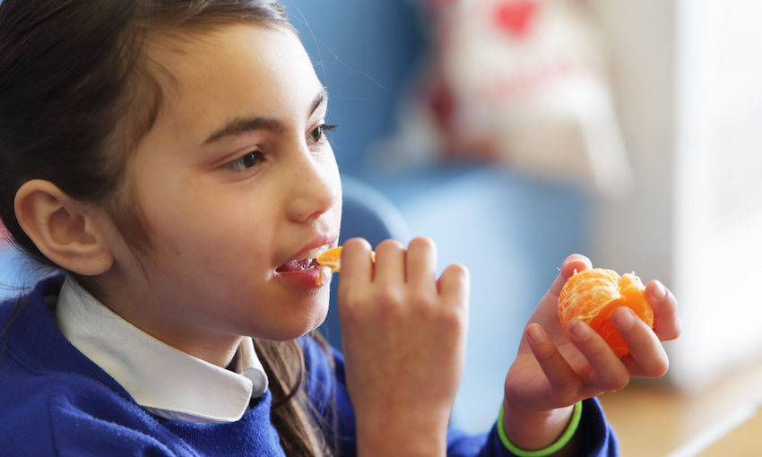 Young girl eating mandarin in school