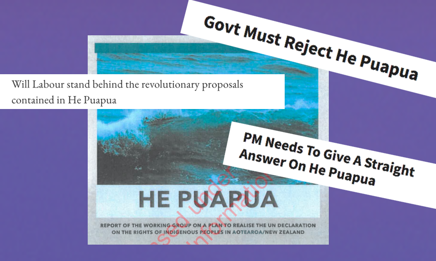 He Puapua: The Indigenous peoples report that caused a NZ political ruckus