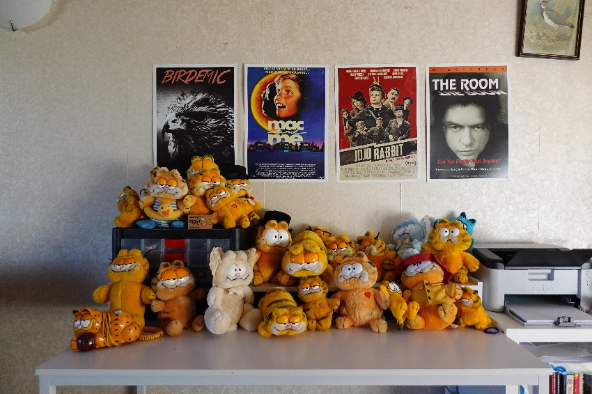 countless garfield toys sitting underneath a movie poster of The Room