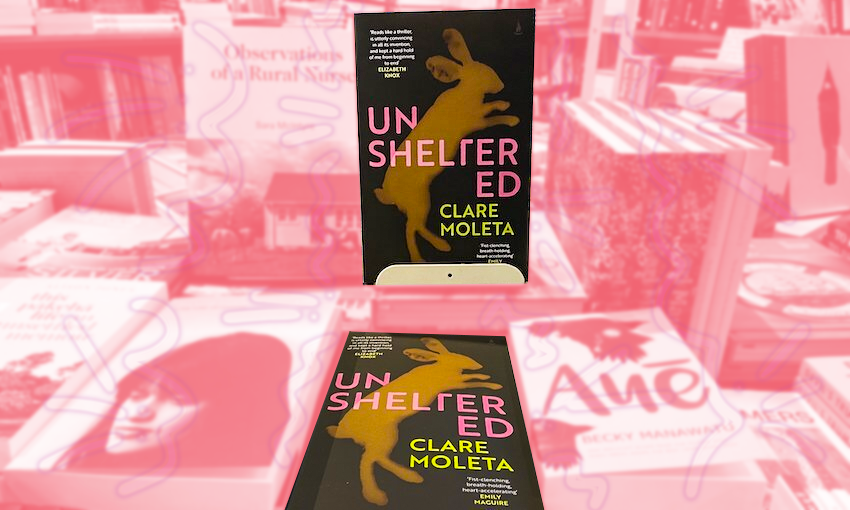 A book Unsheltered on shelves, other books washed out in pink so it stands out.