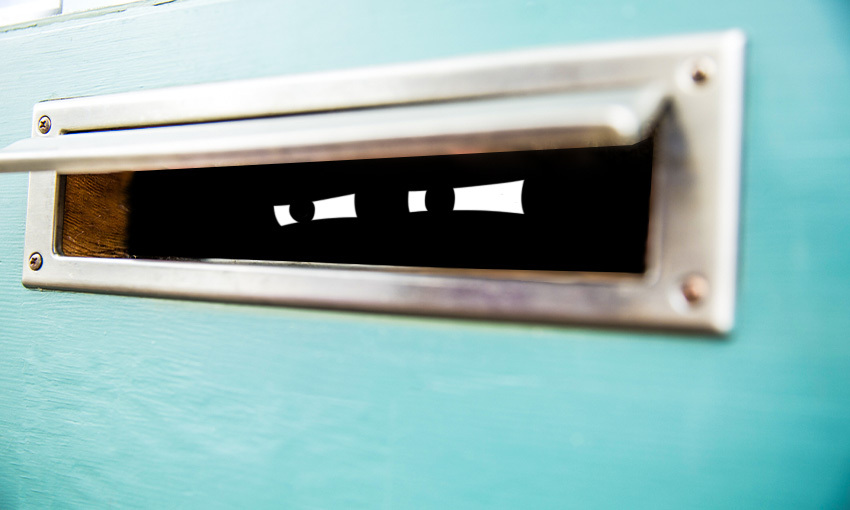 Eyes in a letterbox