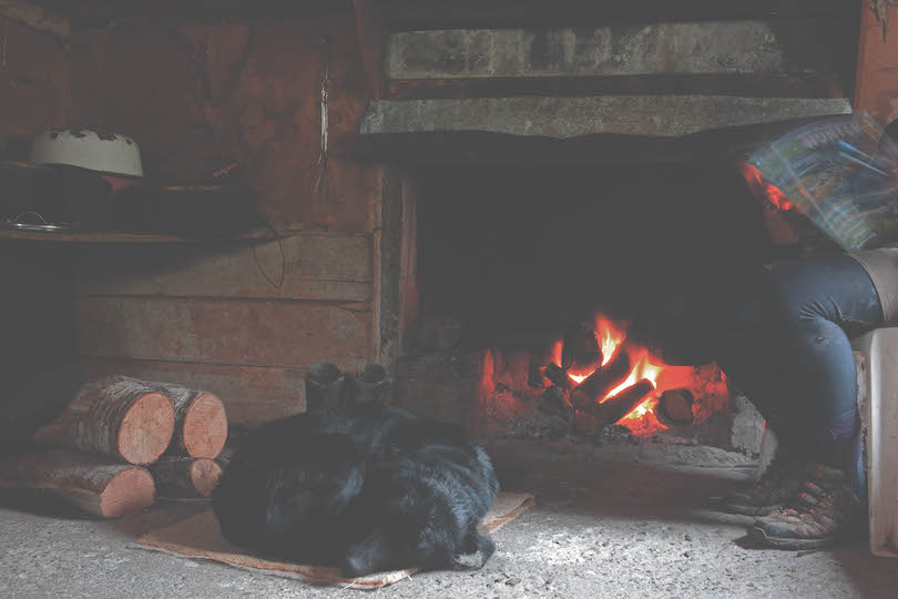 Interior of a mustering hut, open fire roaring, black retriever asleep in front of it, a person reading a hunting mag.