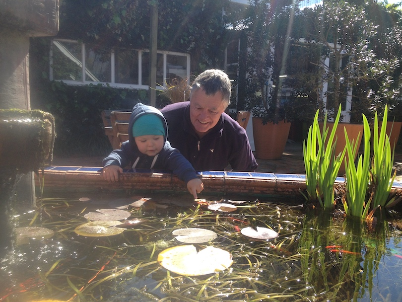 A middle-aged man crouches down close to a toddler, both transfixed by a fishpond. The man is delighted.