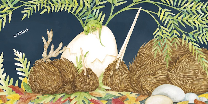 A picture book spread showing an adult kiwi sleeping, a baby kiwi looking grumpy and awake, and an egg peacefully between the two