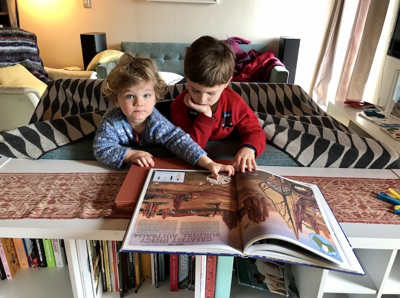 Two young kids in a blanket fort, poking their heads out to read a huge picture book.