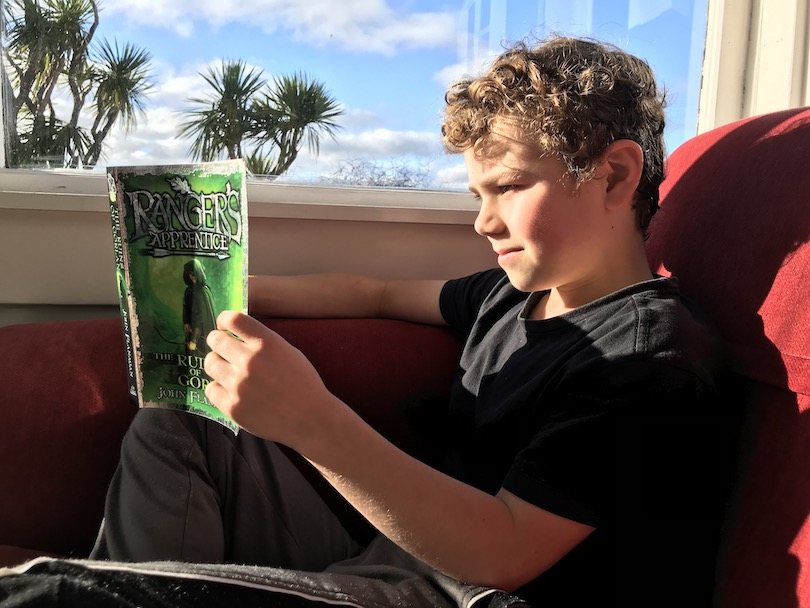 A boy reading a chapter book, beautiful blue-sky day, he's inside on a bright red couch, tī kōuka outside the window